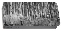 Portable Battery Charger featuring the photograph Colorado Autumn Wonder Panorama In Black And White  by OLena Art Brand