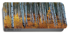 Colorado Autumn Wonder Panorama Portable Battery Charger