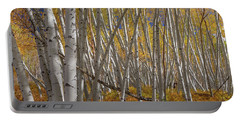 Portable Battery Charger featuring the photograph Colorful Stick Forest by James BO Insogna