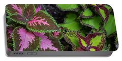 Colorific Coleus Portable Battery Charger