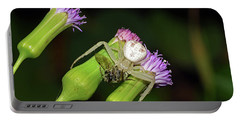Crab Spider With Bee Portable Battery Charger