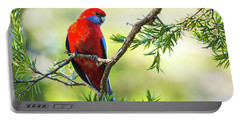 Crimson Rosella Portable Battery Charger