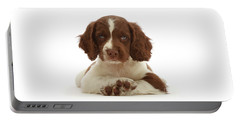 Cross Paws Portable Battery Charger