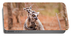 Portable Battery Charger featuring the photograph Curiosity by Alex Lapidus