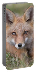 Curiosity And Trust Portable Battery Charger
