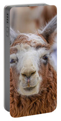 Cute Llama Portable Battery Charger