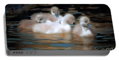 Cygnets Portable Battery Charger