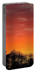 Cypress Swamp Sunset 4 Portable Battery Charger