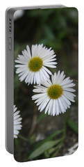 Daisy Daisy And Your White Petal Minding The Sun Core Portable Battery Charger