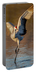 Dance Of The Sandhill Crane Portable Battery Charger