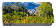Deep Desert Valley In A Sonoran Desert Spring Portable Battery Charger