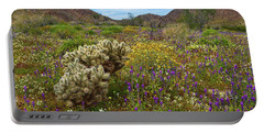 Desert Spring Portable Battery Charger