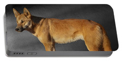 Dingo Portable Battery Charger