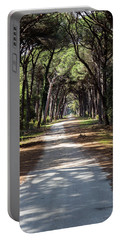Dirt Pathway In A Mediterranean Pine Forest Portable Battery Charger