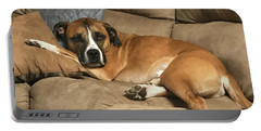 Dog Life Portable Battery Charger