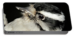 Downy Woodpecker Female Portable Battery Charger