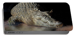 Portable Battery Charger featuring the photograph Dozy Crocodile by Elaine Teague