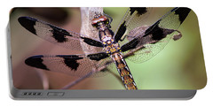 Portable Battery Charger featuring the photograph Dragon Fly, Insect, Northeast Texas, Grass, Pasture, Summer by Karen Rispin