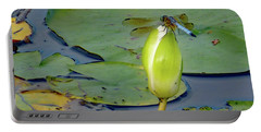 Dragonfly On Liliy Bud Portable Battery Charger