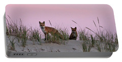 Dune Foxes Portable Battery Charger