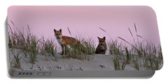 Portable Battery Charger featuring the photograph Dune Foxes by Robert Banach