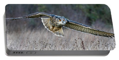 Eagle Owl Gliding Portable Battery Charger