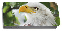 Bald Eagle Perched In A Tree Portable Battery Charger
