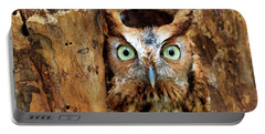 Eastern Screech Owl Perched In A Hole In A Tree Portable Battery Charger