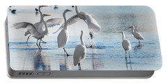 Egret Ballet 1400 Portable Battery Charger