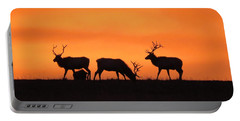 Elk In The Morning Light Portable Battery Charger