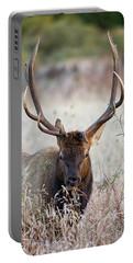 Elk Portrait Portable Battery Charger