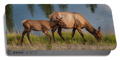 Portable Battery Charger featuring the photograph  Elks Grazing On The Madison River, Wy by Lon Dittrick