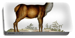Engraving Of A Red Deer  Portable Battery Charger