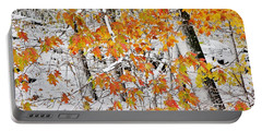 Fall And Snow Portable Battery Charger