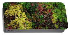 Portable Battery Charger featuring the photograph Fall Color Along The Big Tom by Jon Burch Photography
