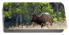 Fall Color Rocky Mountain Bull Elk Portable Battery Charger
