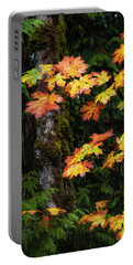 Portable Battery Charger featuring the photograph Fall Colors In Washington State by Michael Ash