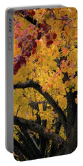 Fall In Carlyle Portable Battery Charger