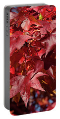 Fall Sweetgum Leaves Df005 Portable Battery Charger
