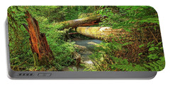 Fallen Trees In The Hoh Rain Forest Portable Battery Charger