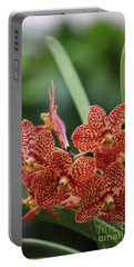 Family Of Orange Spotted Orchids Portable Battery Charger