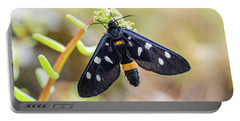 Fegea - Amata Phegea -black Insect With White Spots And Yellow Details Portable Battery Charger