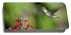 Female Ruby-throated Hummingbird Dsb0320 Portable Battery Charger