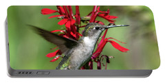 Female Ruby-throated Hummingbird Dsb0325 Portable Battery Charger