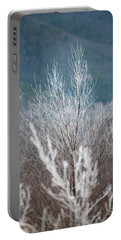 Fingers Of Hoarfrost Portable Battery Charger