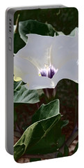 Portable Battery Charger featuring the photograph Flower And Fly by Judy Kennedy