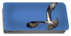 Focused Osprey Portable Battery Charger