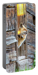 Fox Test  Portable Battery Charger
