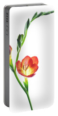 Freesia 2 Portable Battery Charger