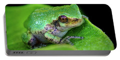 Frogie Portable Battery Charger